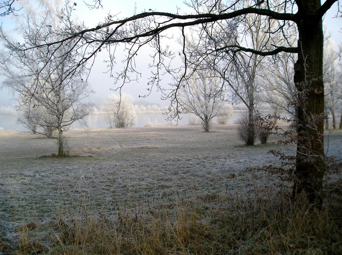 Liegewiesen im Winter