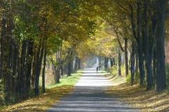 Am Rottalradweg bei Kaismühle